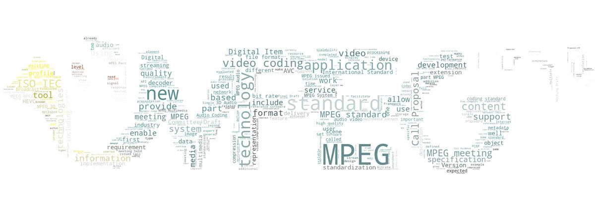 New MPEG Standard Format